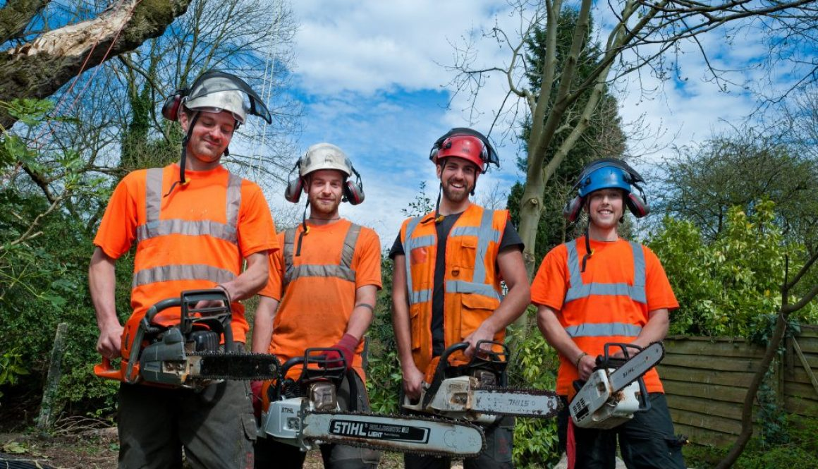 Workers with chainsaws